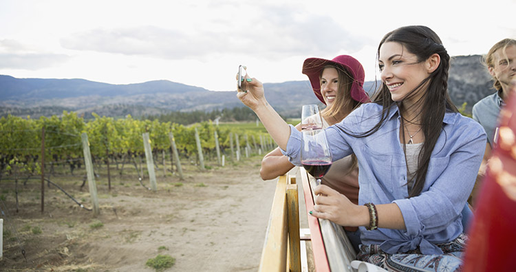 Status Games: How Wine Makers Win with Brand, Not Innovation