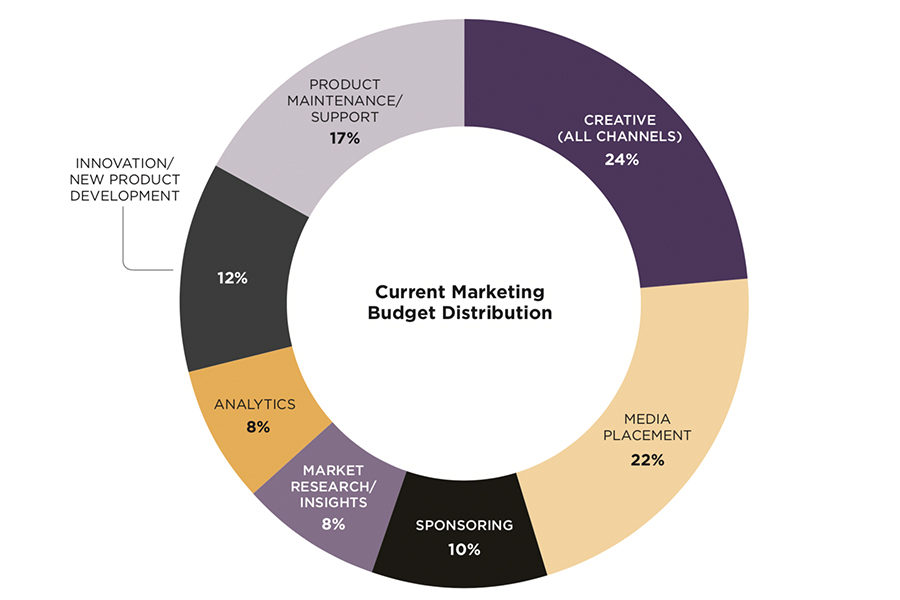pie chart depicting current marketing budget distribution