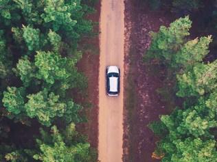 car driving through forest