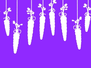 white carrots hanging by string against purple background