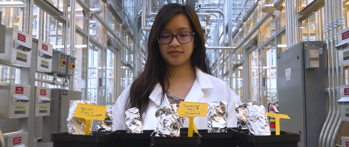 scientist stands over foil-wrapped breakfast tacos in lab