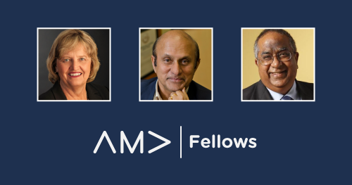 Bitner, Mahajan, and Srivastava Named Newest AMA Fellows