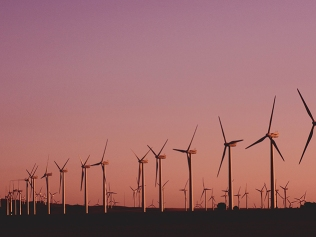 rows of windmills against sunset sky