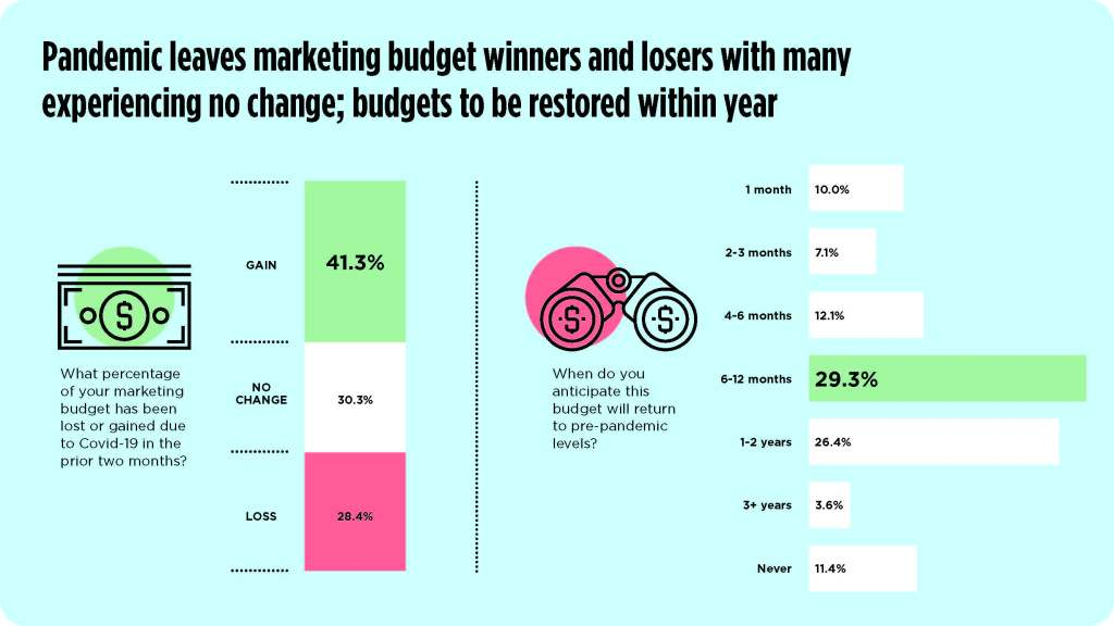 chart depicting marketing budget winners and losers in pandemic