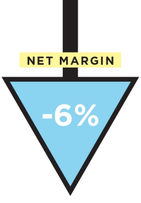net margin down 6%