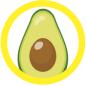 illustration of avocado